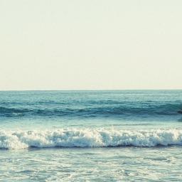 Surf Pie