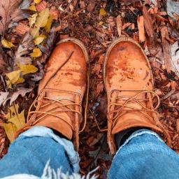 Hello Autumn…